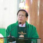 John Hsane Hgyi, Myanmar bishop